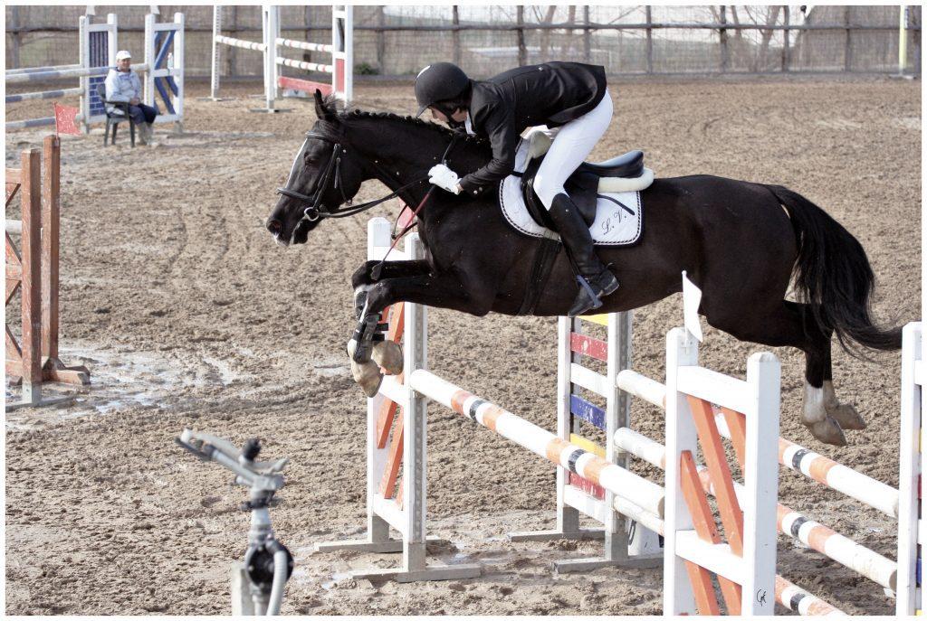 servizio fotografico col cavallo