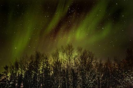 fotografie aurora