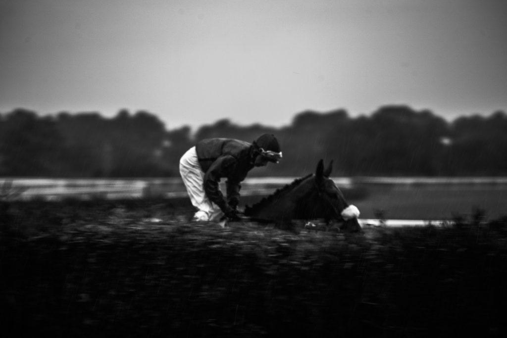 fotografo sportivo cavalli