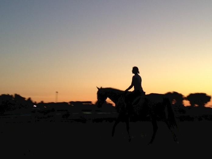 ritratto fotografico a cavallo