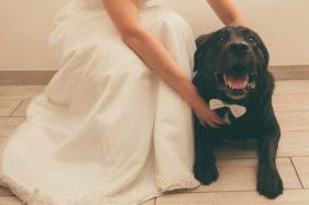 fotografo per matrimonio a roma