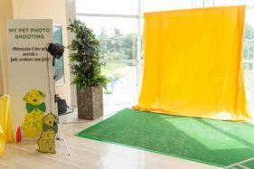corner set fotografico per eventi