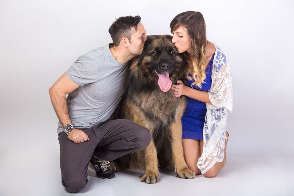 foto in studio con cane