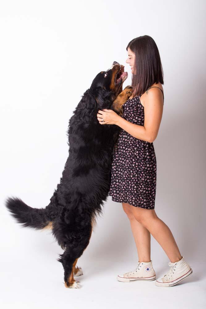 idee regalo per chi ama gli animali